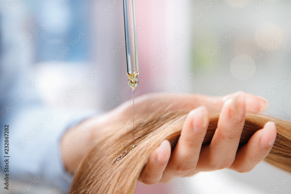 Fototapeta Master hairdresser applies oil to hair care for and restore growth of cuticles woman.