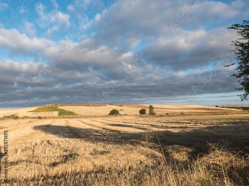 Fotografie, Obraz  Weite Landschaft auf dem Jakobsweg in Spanien