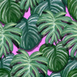 Oleo Leaves Pattern By Repic Design
