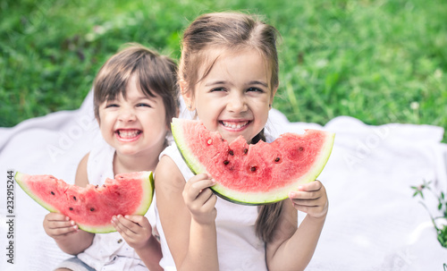 two little cute girls eating watermelon outdoors Poster Mural XXL