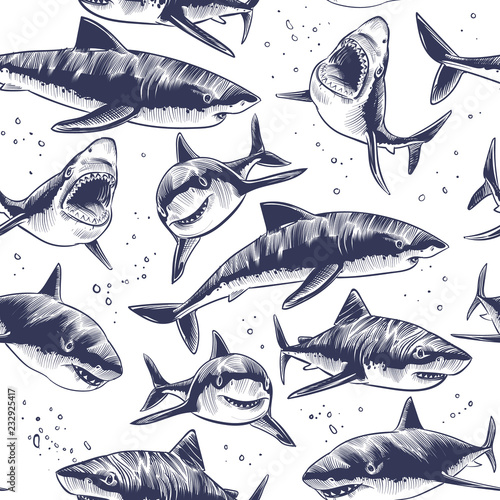 obraz PCV Sharks seamless pattern. Hand drawn underwater sea fish nautical japanese background. Illustration of underwater shark in sea, marine wildlife