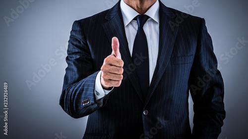 Fotografie, Obraz  指示するシニアビジネスマン
