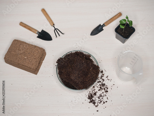 Coconut substrate for soil. Pressed coconut substrate briquette