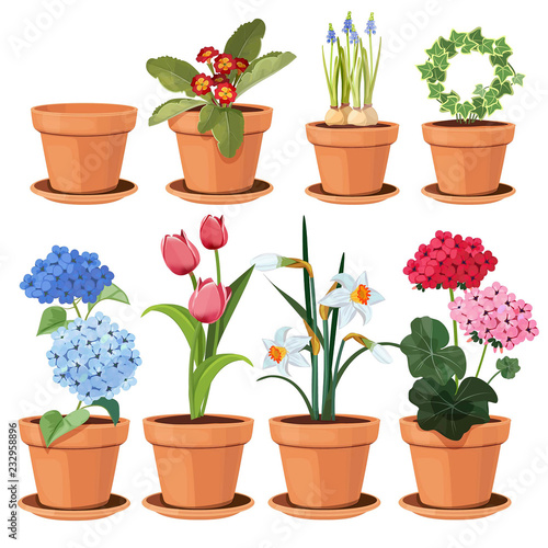 Flowers pot Wallpaper Mural