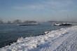 Winter am Rhein bei Bonn