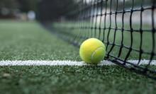 Yellow Tennis Ball At The Net
