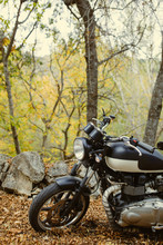 Cafe Racer Motorbike Outdoors