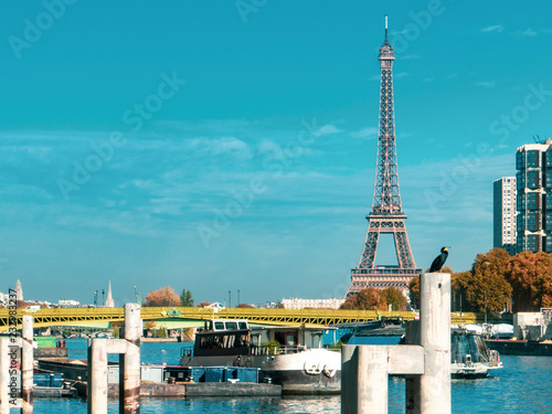 Bird and Eiffel Tower, Paris, Seine, rive taken from the Cycle Track