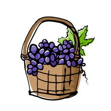 Grapes In Wicker Basket Drawing With Offset Effect.