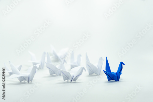 Photo  Close up blue bird leading among white, Leadership concept, Organization moving forward