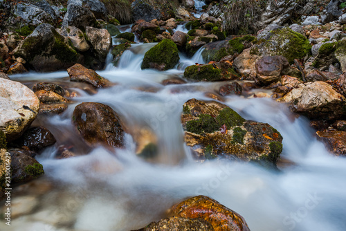 Fototapeten Forest river Water flow in wild mountain creek, long exposure