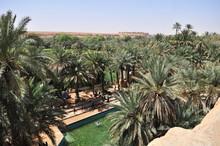 Holy Blue Well Of Meski, Errachidia, Morocco