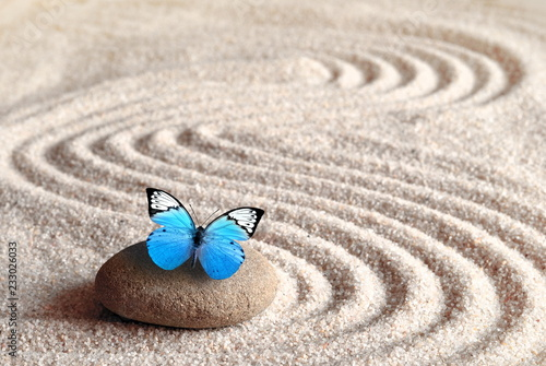 Foto op Aluminium Stenen in het Zand A blue vivid butterfly on a zen stone with circle patterns in the grain sand.