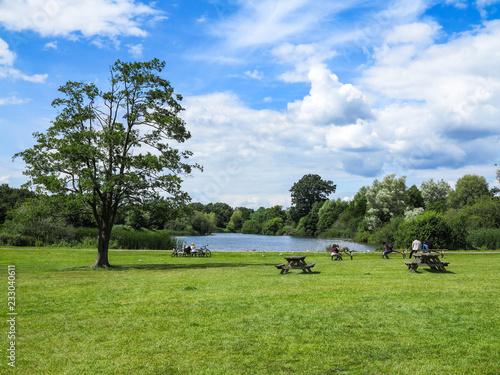 Fotografie, Obraz  Pond and Picnic Tables