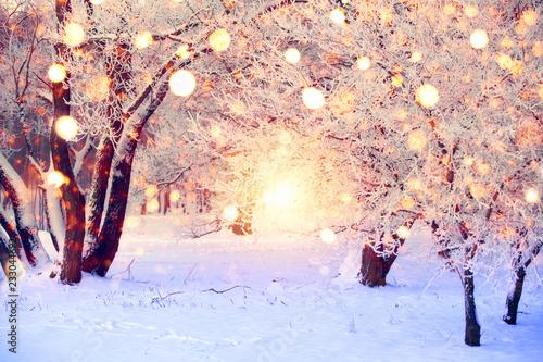 Valokuvatapetti Christmas wonderland