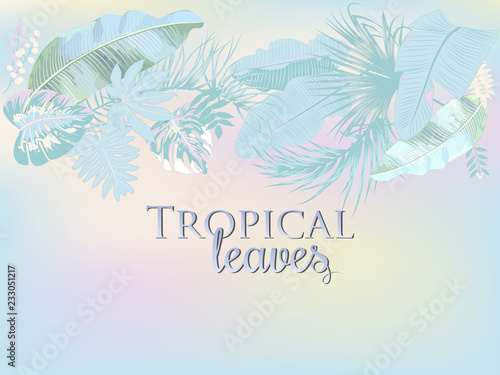Fototapety, obrazy: Vector tropical background in trendy pastel colors.