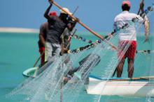 Net Fishing In Rodrigues Tropical Island