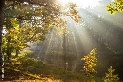 Obraz jesień w parku - fototapety do salonu
