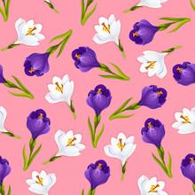 Crocus Flowers Seamless Pattern, Vector
