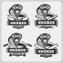 Cricket, Baseball, Football And Hockey Logos And Labels. Sport Club Emblems With Snakes.