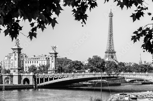 Pont Alexandre III Bridge with Eiffel Tower. Paris, France