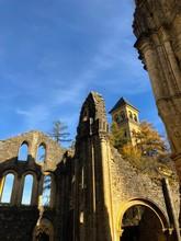 Rovine Della Chiesa Gotica Con Alberi Autunnali, Abbazia Di Notre Dame Di Orval, Orval, Belgio