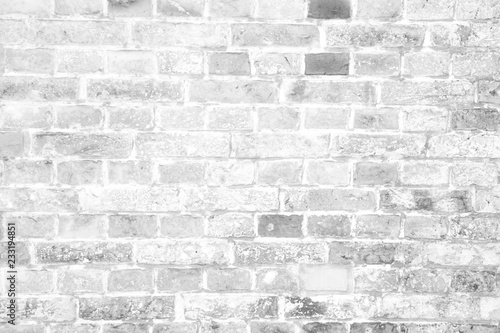 Garden Poster Brick wall Simple grungy white brick wall surface as seamless pattern texture background.