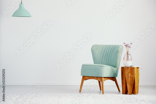 Fototapeta  Green armchair next to wooden table with plant in loft interior with copy space and lamp
