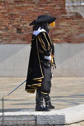 Fotografie, Obraz  mask in Venice Carnival 2