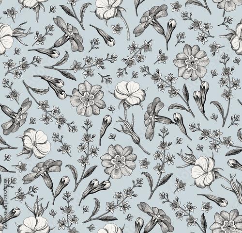 wzor-realistyczny-kwitnienie-odizolowywajacy-kwiaty-rocznik-tkaniny-tlo-piekne-kwiaty-agrotemma-pierwiosnka-croton-tapeta-barokowa-grawerowanie-rysunkowe-wektorowa-wiktorianski-ilustracja
