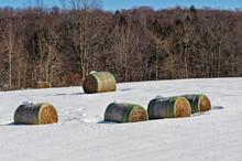 Hay Rolls In Winter Snow