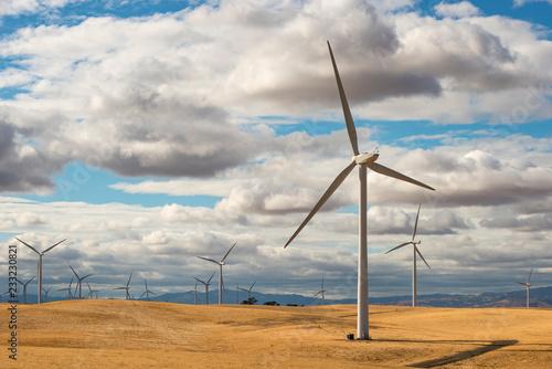Fotografie, Obraz  Wind Turbines in California