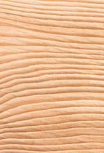 Lumber, Close Up