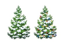 Vector Illustration Of Decorated Christmas Tree In Snow On White Background. Green Fluffy Christmas Pine, Isolated On White Background 1.3