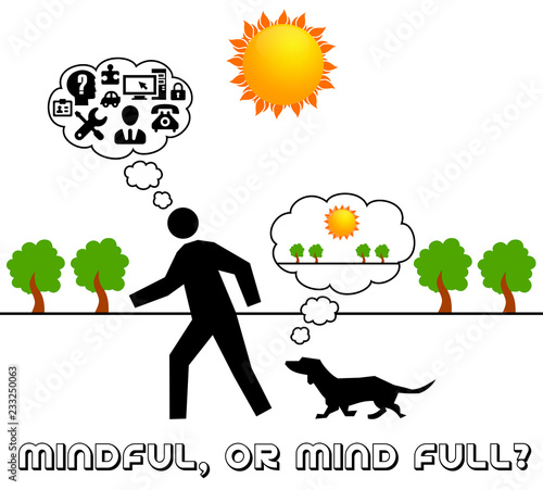 Cuadros en Lienzo mindful or mind full