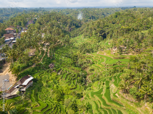 Aerial view to Tegallalang rice terraces near Ubud. Photo from drone. Beautiful scenes of rice paddies and well-known spot for tourists. Bali, Indonesia.