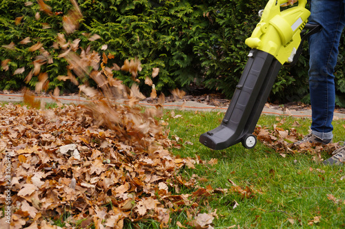 Scraping the leaves with the help of a blower Wallpaper Mural