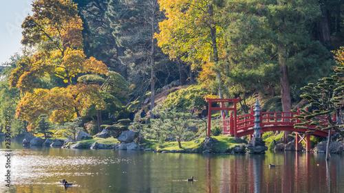 Photo  Automne Parc Maulévrier
