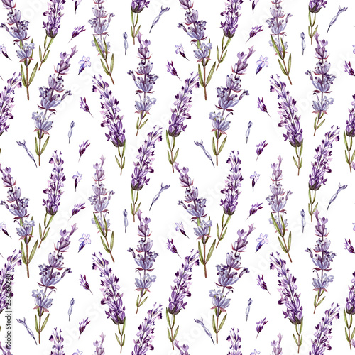 Tela Watercolor pattern with Lavender. Hand painting. Watercolor.