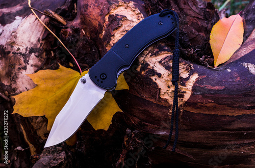 Autumn composition with a knife. Knife and autumn foliage.