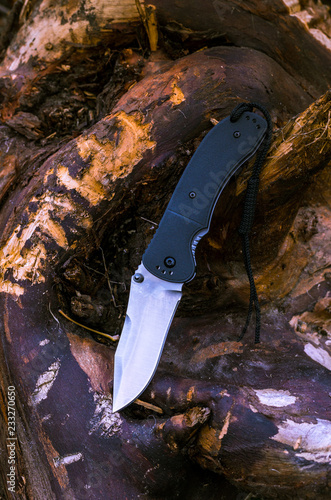 Photo knife on the nature. Photo of a knife on a tree.