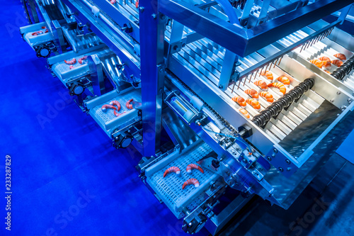 Shrimp processing line. Food industry. Conveyor for processing sea products. Wash the shrimp.