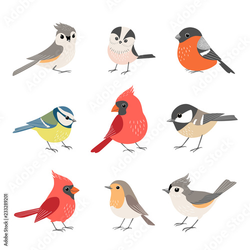 Collection of cute winter birds Canvas Print