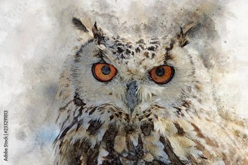Watercolor owl isolated on white background. Hand drawn watercolor owl perfect for design greeting card or print
