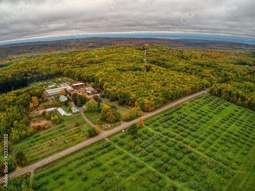 Fotografie, Obraz  Aerial View of an Apple Orchard near Bayfield, Wisconsin during Autumn