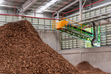 Conveyor For Sawdust At Storag...