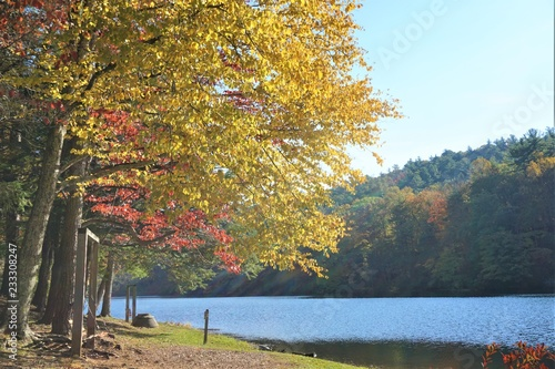 Fotobehang Zwavel geel Fantastic view of mountain ,colorful leaves on the trees with reflection in the lake at Vogel State park , Autumn in North Georgia USA.