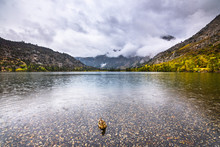 Silver Lake On A Rainy Autumn Day; June Lake Area, Eastern Sierra Mountains, California