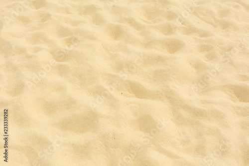 Photo Stands Stones in Sand Sand beach texture