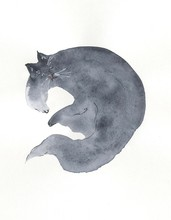Sleeping Grey Cat Painting In Watercolor On White Backgound